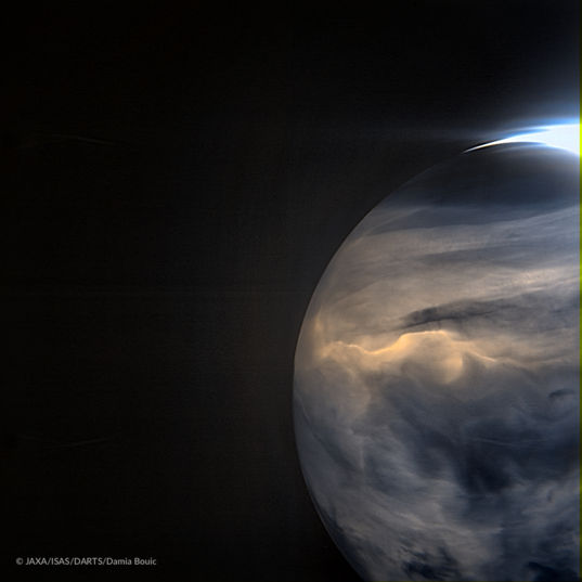Venus in infrared from Akatsuki: curling clouds