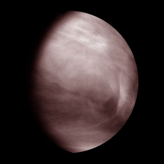 Venus' Middle Clouds