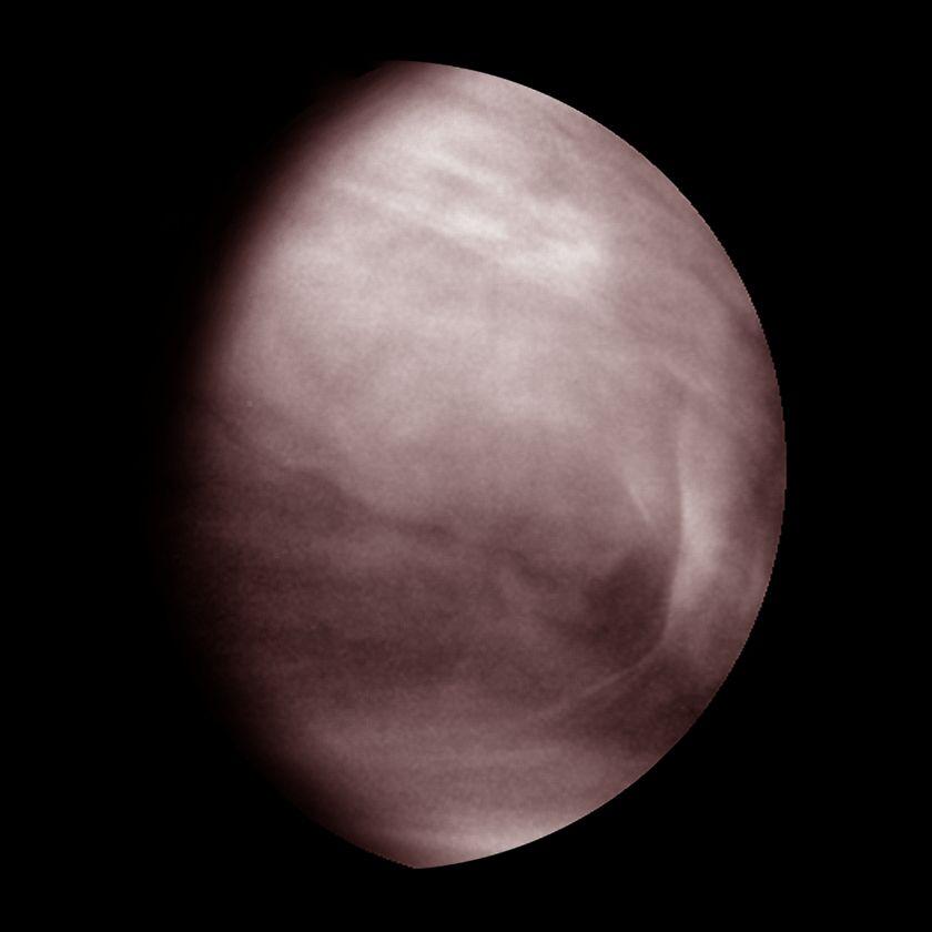 Venus' Middle Clouds