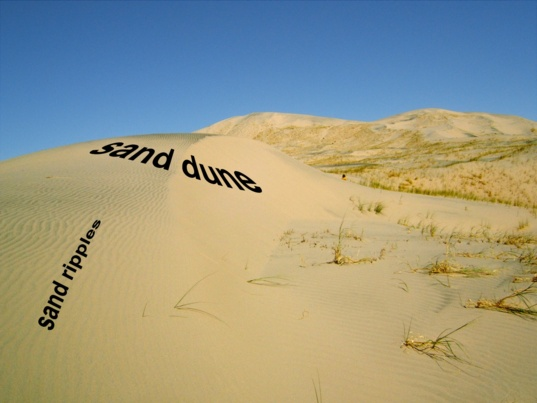 A sand dune and sand ripples in the Kelso Dunes in the Mojave Desert, California, USA