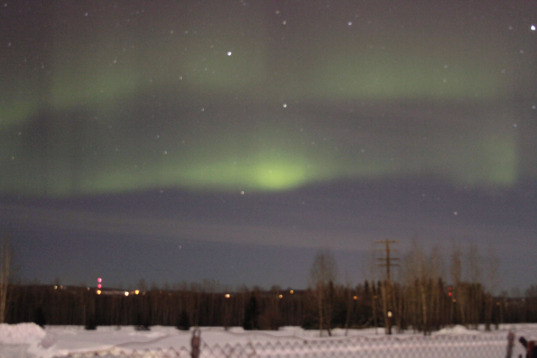 Our big Aurora moment in Creamer's Field, Fairbanks, Alaska