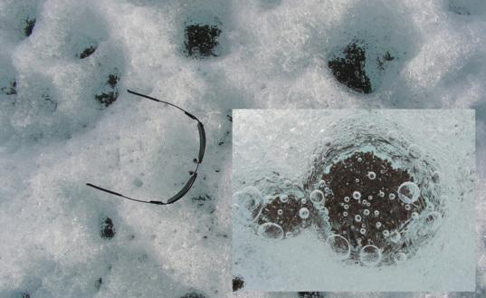 Cryoconites in glacier ice