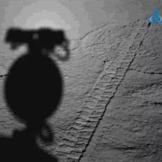 Yutu-2 sees its shadow