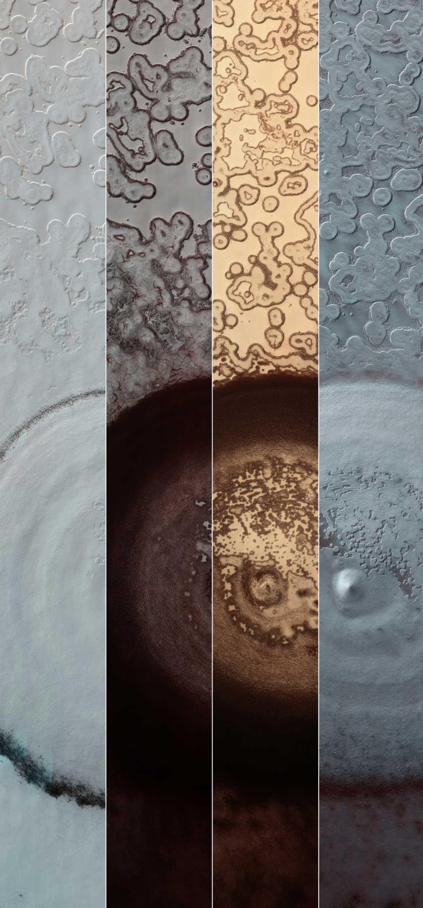 Mysterious Feature Near the Martian South Pole