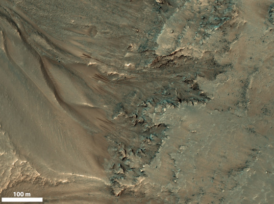 Recurring slope lineae (RSL) in Newton Crater, Mars