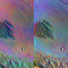 Color infrared view of White Rock from Mars Odyssey THEMIS