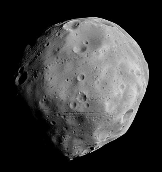 The anti-Mars face of Phobos