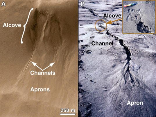 Gullies on Mars vs. Earth