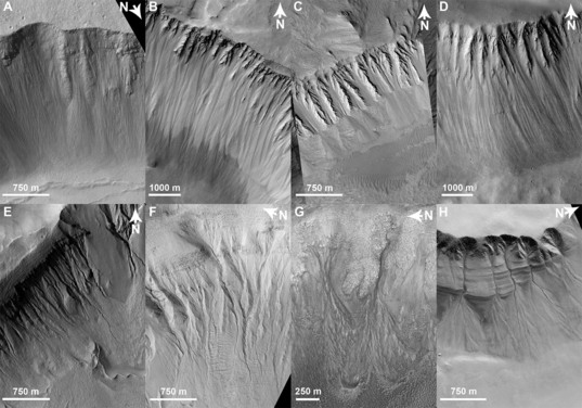 Dry mass wasting vs. gullies on Mars