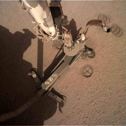 Top of the InSight Mole Exposed, Sol 209