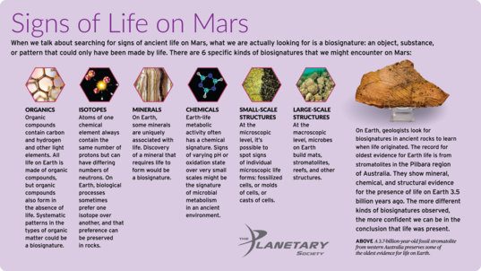 Signs of Life on Mars