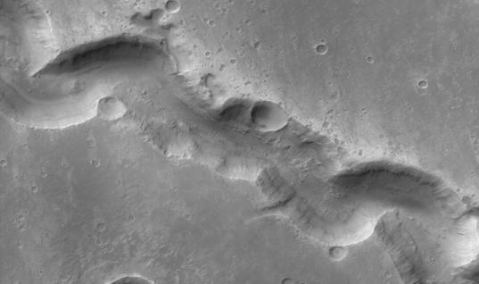 Gullies in Nigral Vallis