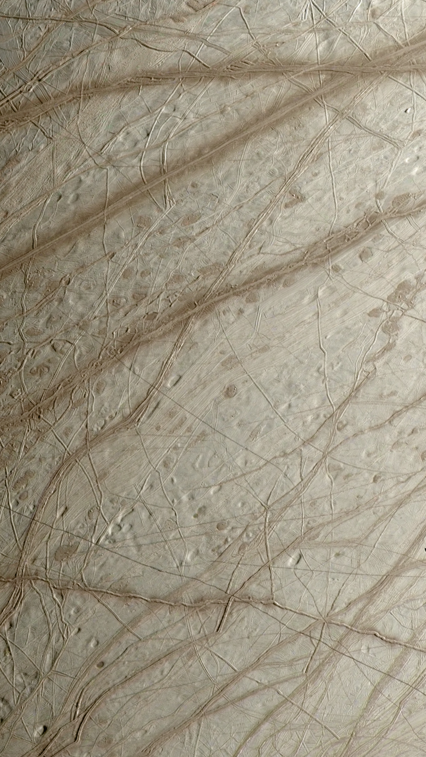 Europa's diverse surface
