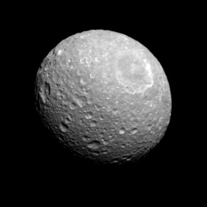 Eyeball mimas
