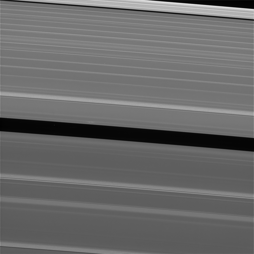 Lone propeller in Saturn's rings