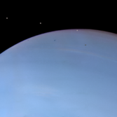 Despina eclipses and transits Neptune (Despina brightened)