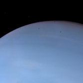 Despina eclipses and transits Neptune