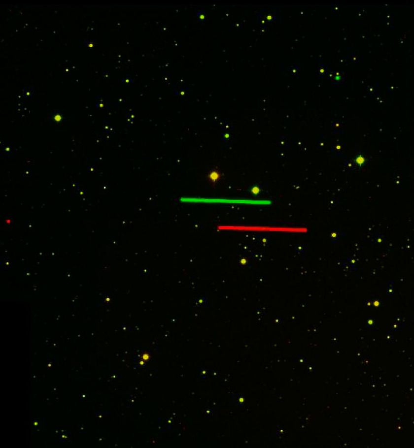 Asteroid 4179 Toutatis as seen simultaneously from Paranal and La Silla