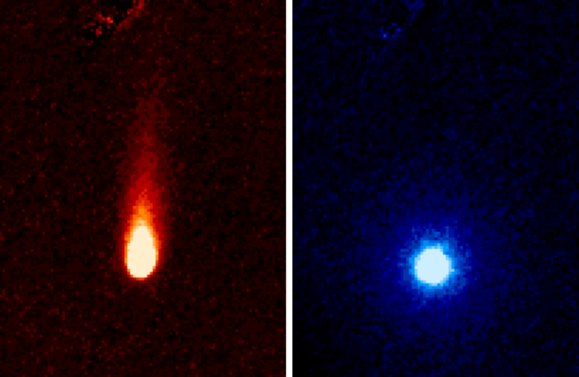 The two components of ISON
