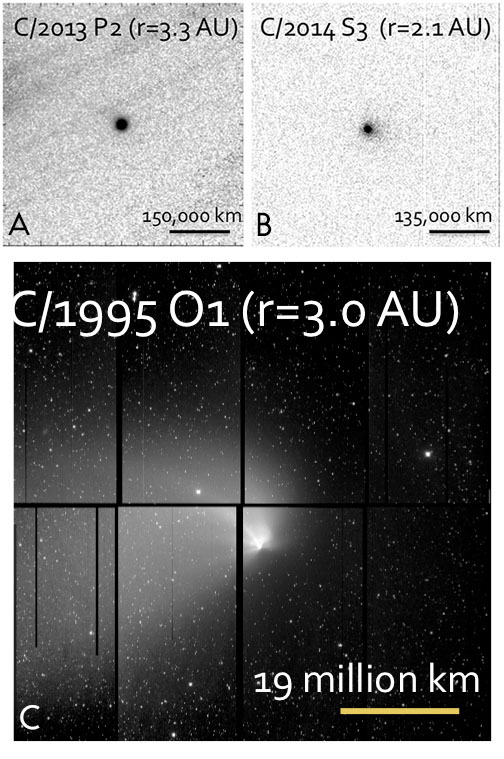 Objects from the Oort Cloud