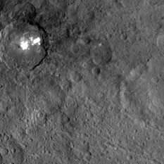 Occator and Kirnis craters