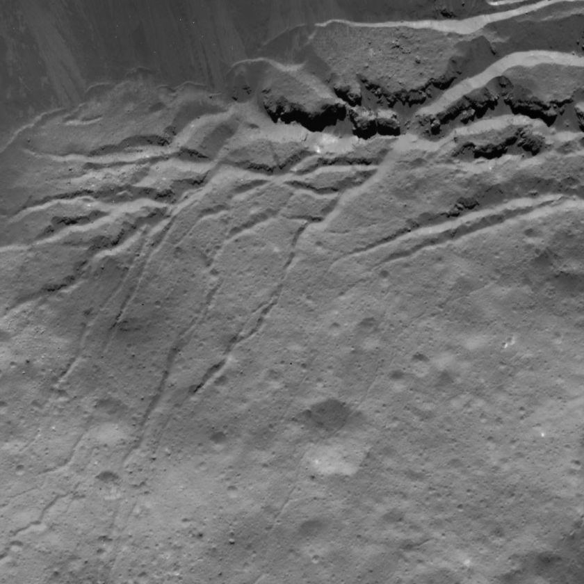 Fractures in Occator