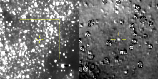 New Horizons' first sight on Kuiper belt object 2014 MU69
