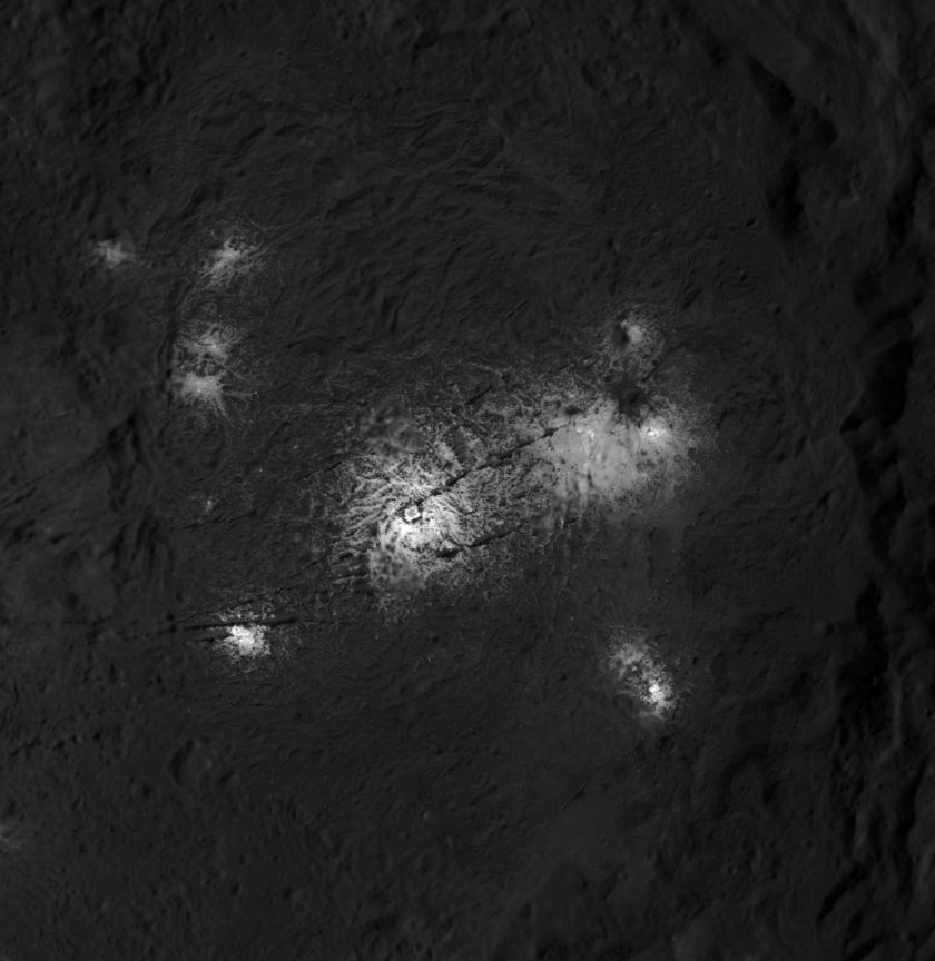 Vinalia Faculae within Occator crater, Ceres
