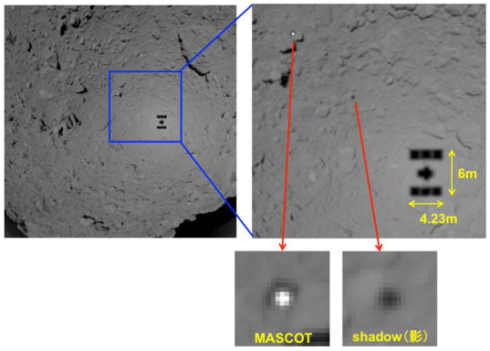 MASCOT and Hayabusa2's shadows on Ryugu