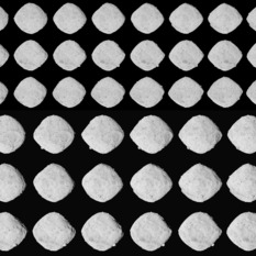 OSIRIS-REx's approach surveys of asteroid Bennu