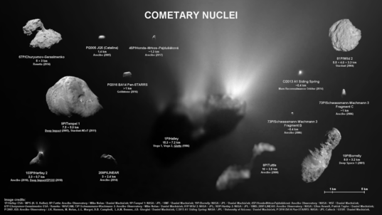 Cometary nuclei imaged by spacecraft and radio telescope, to scale
