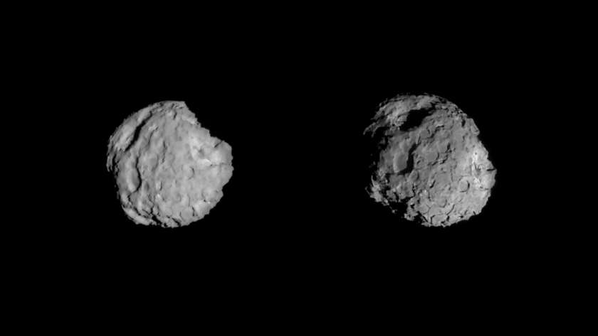Portraits of comet 81P/Wild 2