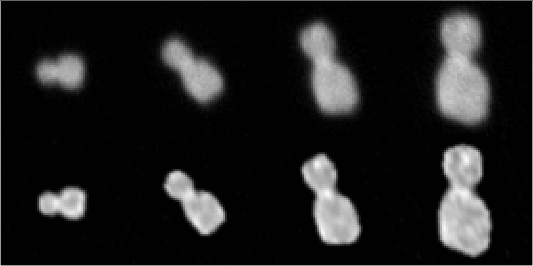 https://planetary.s3.amazonaws.com/assets/images/9-small-bodies/2019/2014mu69-opnavs-stern-tweet-20190115.jpg
