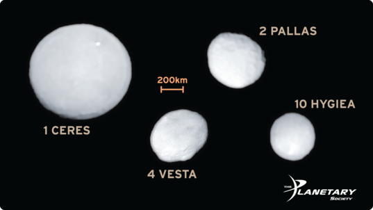 The Largest Asteroids Imaged by SPHERE