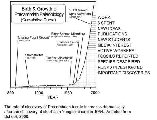Birth and growth of Precambrian paleobiology
