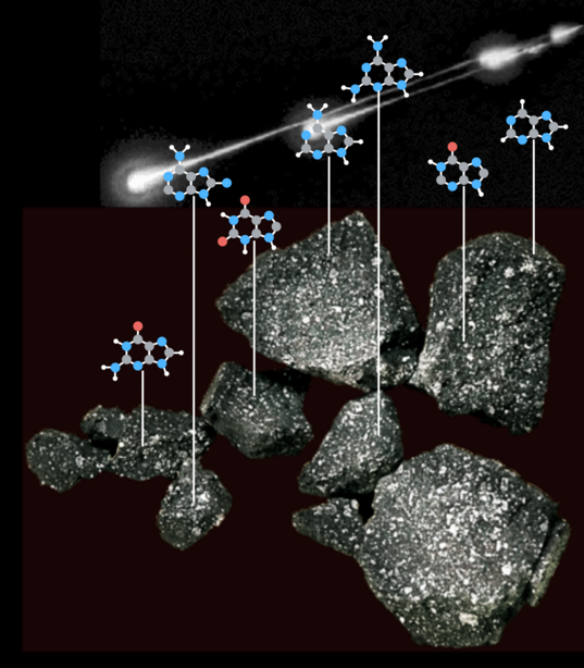 Nucleic acids in carbonaceous meteorites