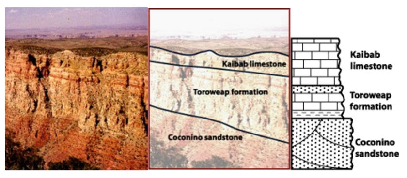 Stratigraphic column of the Grand Canyon