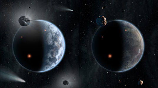 Silicate-rich versus carbon-rich planetary systems