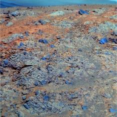 Large clasts of Moreton Island