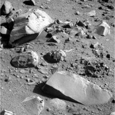Field of Martian dreams
