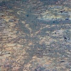Clay minerals all around