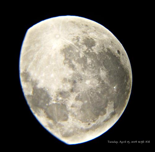 Moon 2014