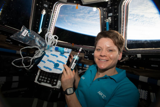 Anne McClain in the ISS Cupola