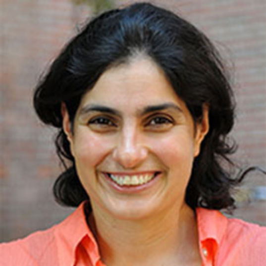 Nergis Mavalvala head shot