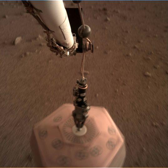 SEIS dangling, sol 22