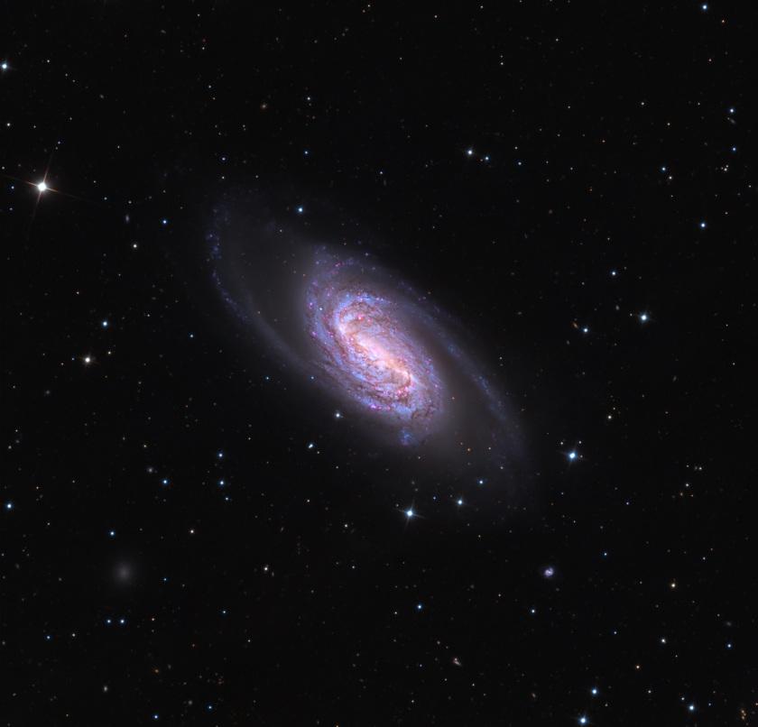 Full view of NGC 2903