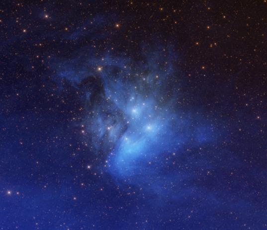Blue WISE Pleiades