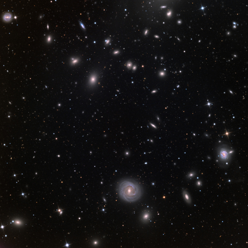 NGC 4921: Outskirts of the Coma Cluster