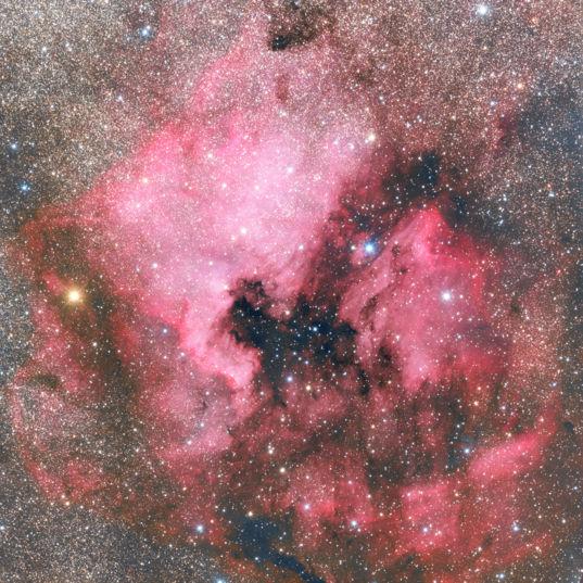 NGC 7000, the