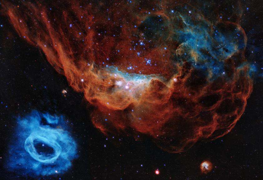Cosmic Reef